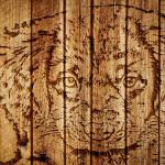 Juntas-superficie-de-madera-textura-de-fondo-900x1440 (2)