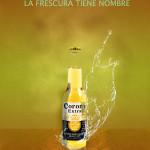 cartel botella